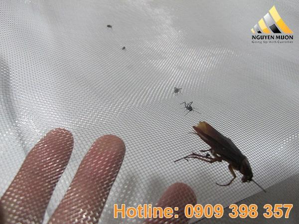 Hình ảnh lưới inox chống muỗi