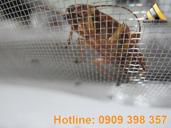 Lưới chống trùng đang dần được thay thế những sản phẩm khác ít chất lượng hơn