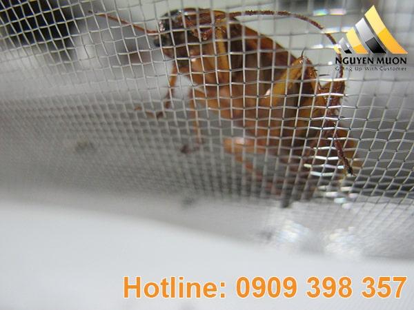 Ứng dụng của lưới inox chống muỗi